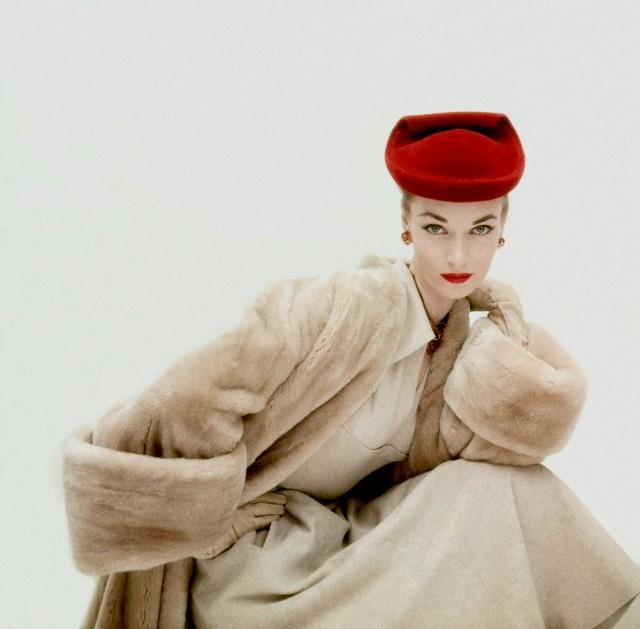 visone_vintage_belle_foto
