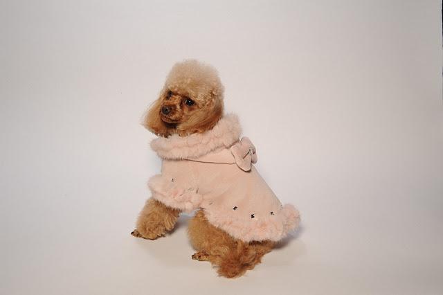 Collezione per cani di piccola taglia in pelliccia for Marsupio per cani di piccola taglia