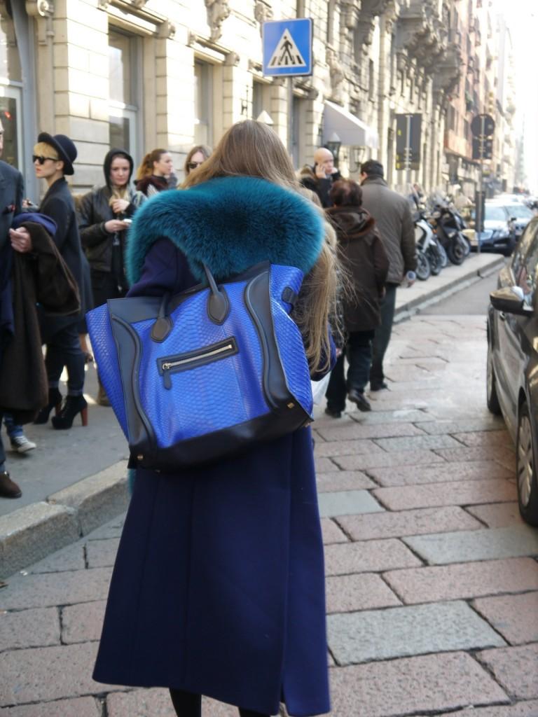 borsa_di_pelle_pitone_celine_blue_collo_blu_di_volpe