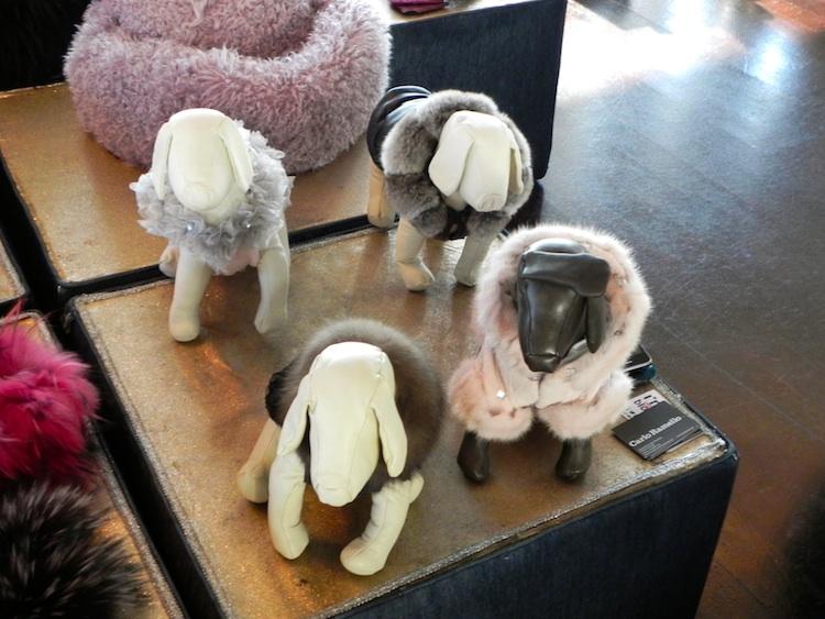 pellicce per cani