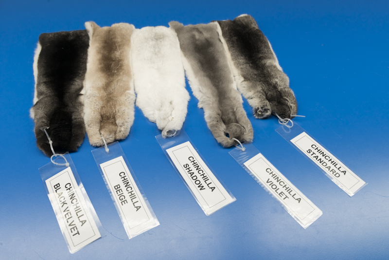 chinchilla_fur_coats