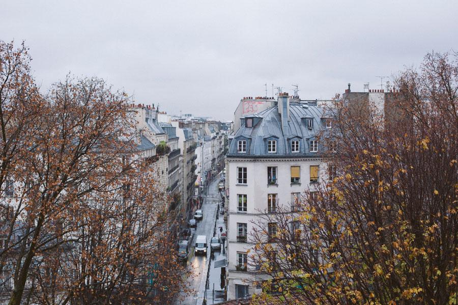 paris-fur1