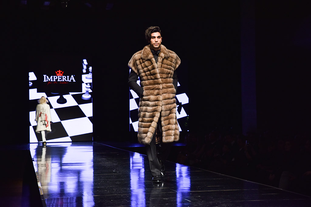 Fur_excellence_athens_show_photo-72