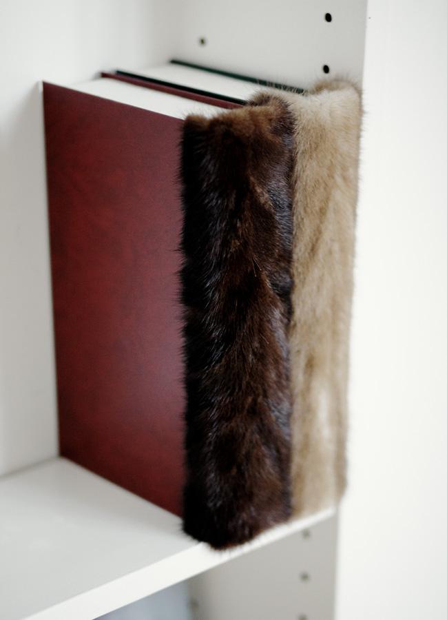 libro pelliccia