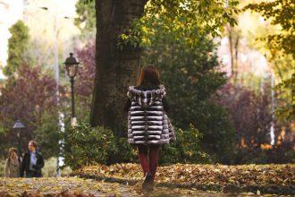 pelliccia cincillà in autunno